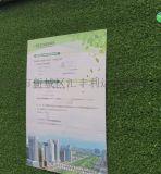 西安仿真草坪围墙绿草坪
