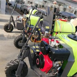植保机械小型打药机 园林喷雾打药车