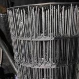 大丝玉米电焊网/原镀丝电焊网