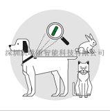 全國城市動物管理 頸部注射玻璃管標籤 身份資訊記錄