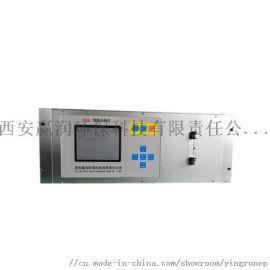 在线二氧化碳分析仪ERUN-YR3001