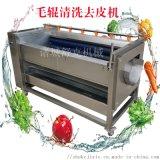 大姜魔芋全自动毛辊清洗机 果蔬毛辊清洗加工设备厂家