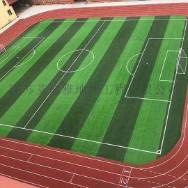 承接苏州体育运动场人工草坪一体化施工