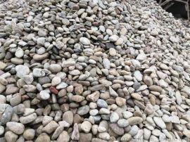 江苏鹅卵石鹅卵石厂家鹅卵石机制