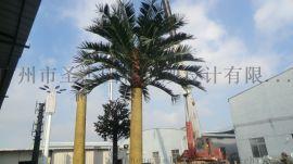 仿真椰子树厂家,玻璃钢椰子树直销
