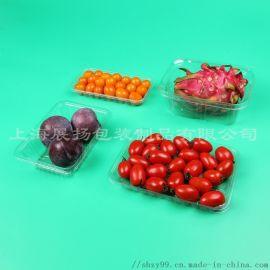 厂家定制食品塑料包装、水果吸塑托盘