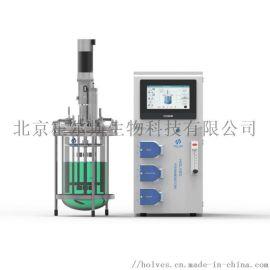 实验室玻璃发酵罐La210系列单罐