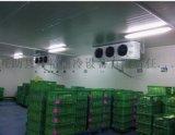 供西寧製冷安裝和青海冷庫工程