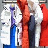 潮流尖貨震撼來襲 金元雪羽絨服設計滿滿經典潮流