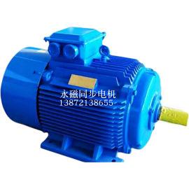 供应TYBZ315000-4大功率永磁同步电机
