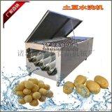 全自动土豆水洗机,土豆红薯清洗毛刷机