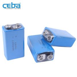 锂亚硫酰**干电池ER9V门禁万用表电池10.8V
