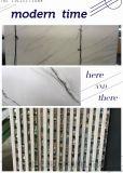 廠家直銷鋁蜂窩板牆板系統 建築幕牆裝飾材料