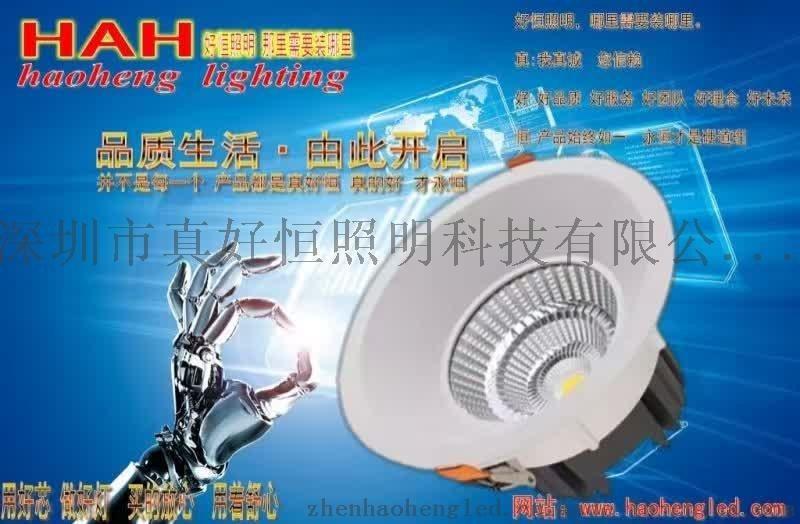 供应好恒照明LED高档射灯 高档筒灯 聚光灯 高光效筒灯 高显色指数射灯 可调角度射灯 天花灯等商业照明灯具