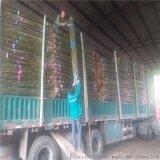 产地直销2米5细竹竿、细竹子