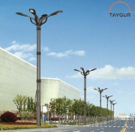 泰格LED照明,热镀锌路灯杆,9米新农村道路灯