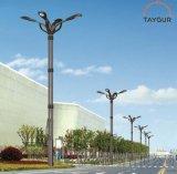 泰格LED照明,熱鍍鋅路燈杆,9米新農村道路燈