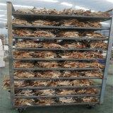 划算專業的茶樹菇烘乾機設備廠家