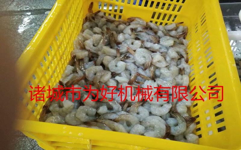 广东虾尾类裹浆裹糠机规格型号齐全