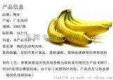 粵旺 香蕉漿 鮮榨原漿 果醬 香蕉奶飲料首選原材料