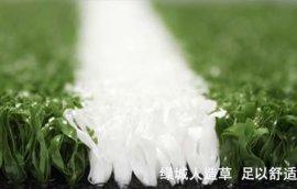 人造草坪(门球场)|CGT绿城人造草|人工草皮
