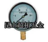 上海天川压力表
