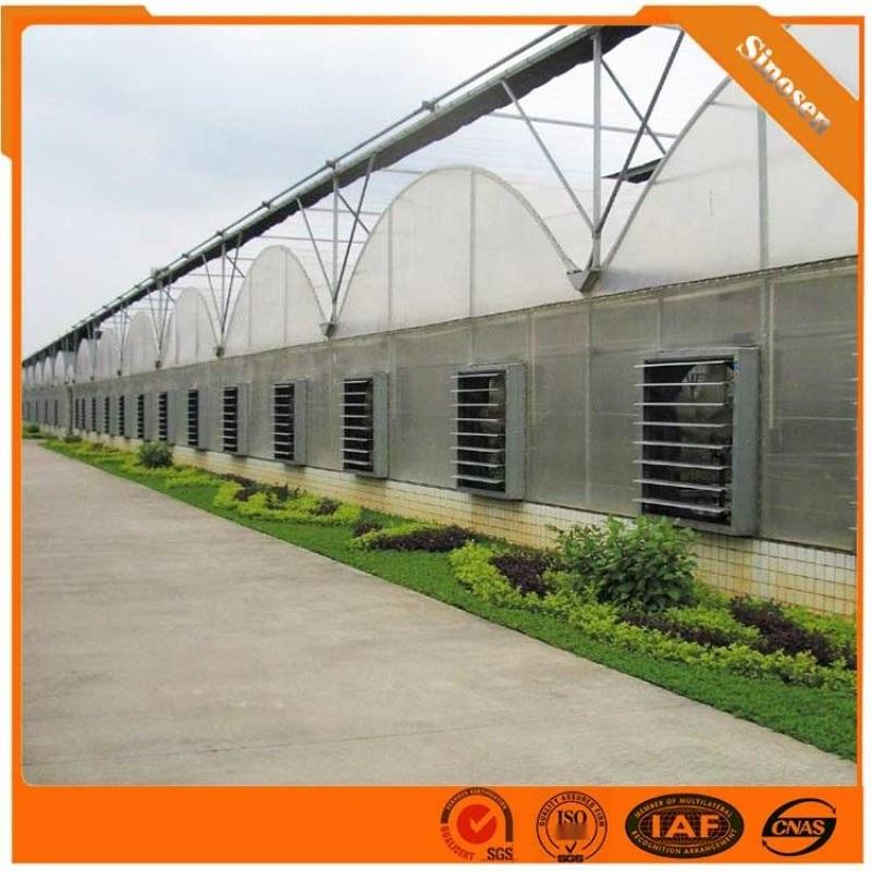 大棚管 大棚钢管 温室大棚工程 温室工程