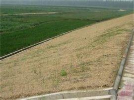 护坡用环保草毯的六特征