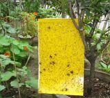 誘蟲板/粘蟲板/誘蟲黃板/誘蟲藍板/誘蟲粘蟲板