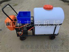 农用新型手推式电动喷雾器生产厂家