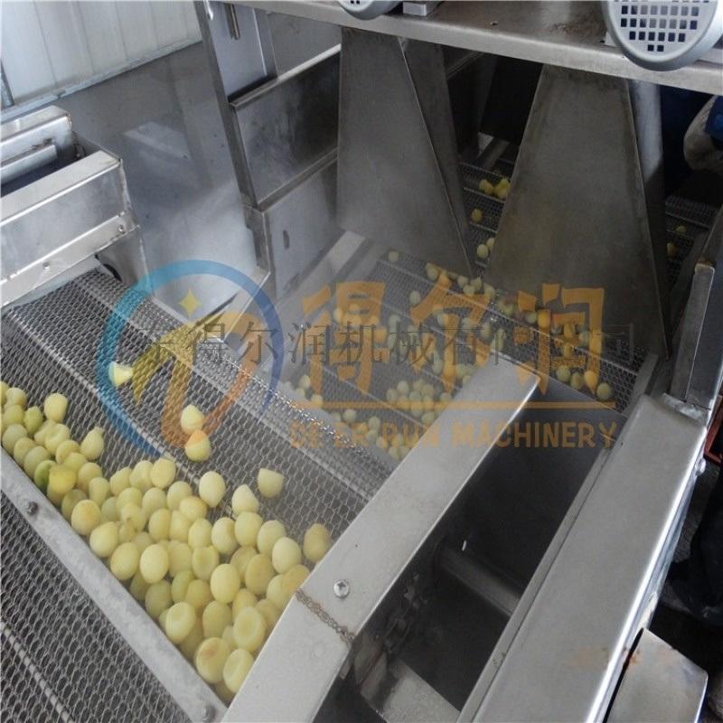 山东自动FD6土豆块预煮机 连续土豆块蒸煮冷却线