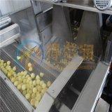 山東自動FD6土豆塊預煮機 連續土豆塊蒸煮冷卻線