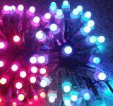 LED全彩外露灯串