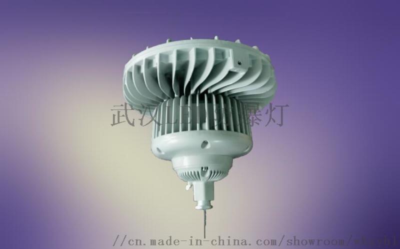支架式LED防爆投光燈100W