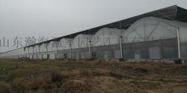 厂家承建优质连栋薄膜温室 薄膜大棚