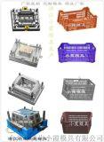 生產設計冷凍箱模具供應商
