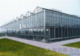 玻璃温室大棚,智能温室大棚厂家