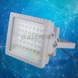 LED防爆泛光燈