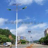 新農村路燈10米雙臂太陽能led路燈戶外