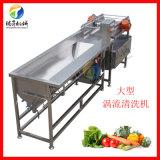果蔬清洗机 涡流气泡式蔬菜清洗机 净菜加工设备