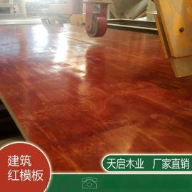建筑模板厂家直销 胶合板  定制加工多层板