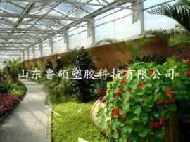 东营广饶县阳光板 温室生态餐厅采光阳光板