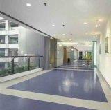 廣西名揚室內PVC地板南丹設計施工