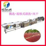 青棗清洗機 果蔬清洗風幹流水線 農產品加設備