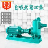 FSR-80自吸清水泵 高揚程自吸泵 小型自吸泵
