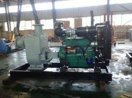 8寸柴油机无堵塞自吸泵组