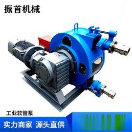 河南周口软管挤压泵厂家/工业软管泵供应商