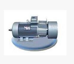 YZRDW、YZRSW涡流制动双速电机