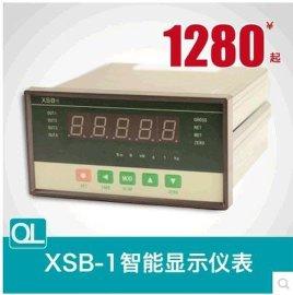 QL-XSB-1 显示仪表 峰谷值实验测量仪表