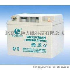 光盛UPS蓄电池24AH/12V24AH/FM-24免维护电瓶价格直销